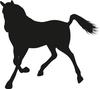 Gîtes et cheval