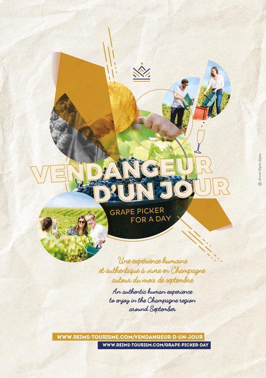 Affiche A4 Vendangeur d'un jour Reims.jpg