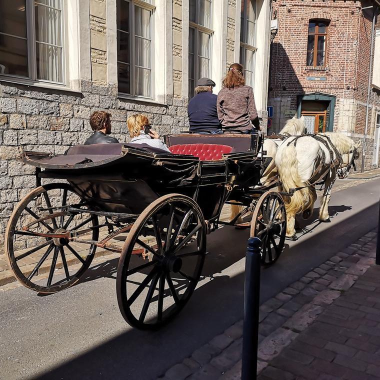 Balade-calèche-cheval-chevaux-Douai-Douaisis-Nord-France  (5).jpg