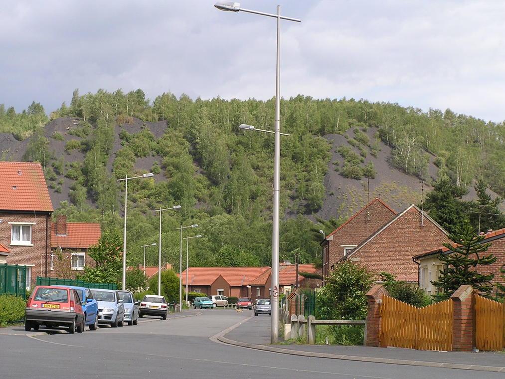 Roost Warendin - Belleforière - Douaisis - Nord- France (6).JPG