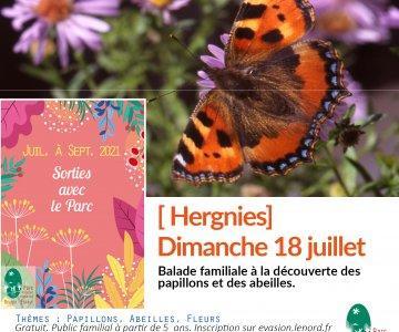 carre_fb18_juillet_hergnies.jpeg