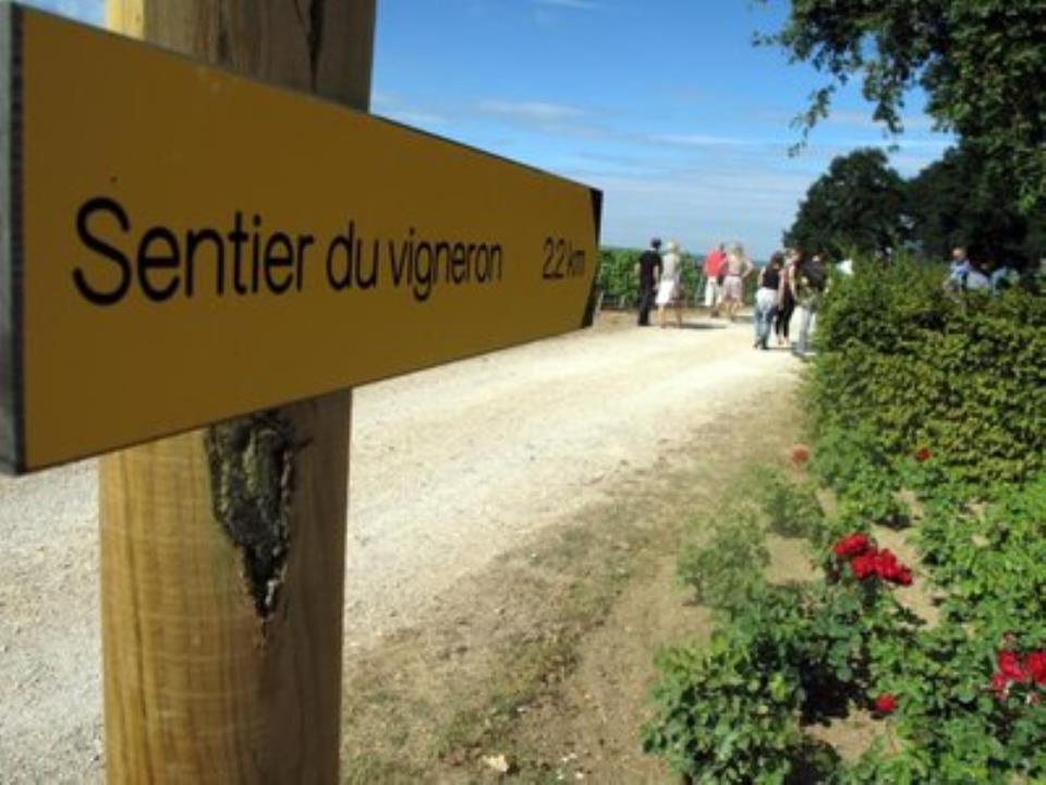 sentier-du-vigneron-7.jpg