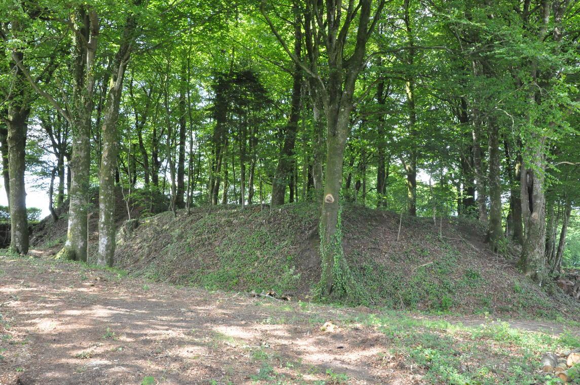 Castel Vouden - Roudouallec - RMCom.JPG
