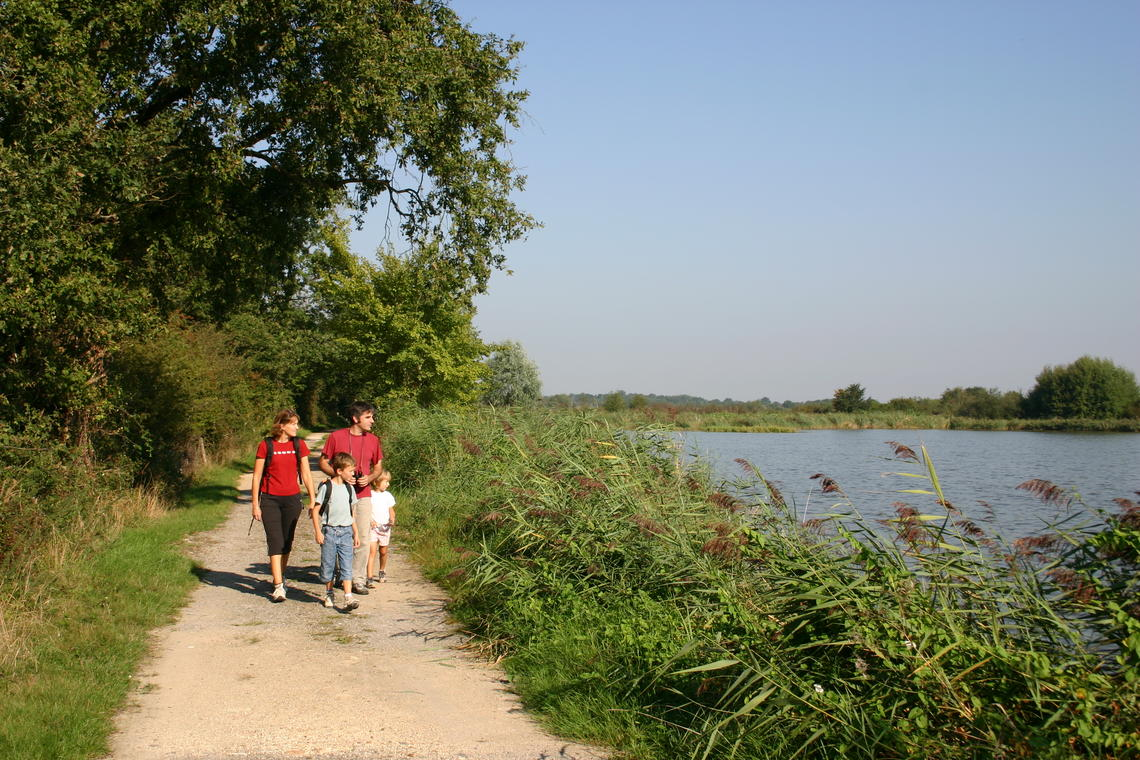 Parc_naturel_regional_Brenne.JPG