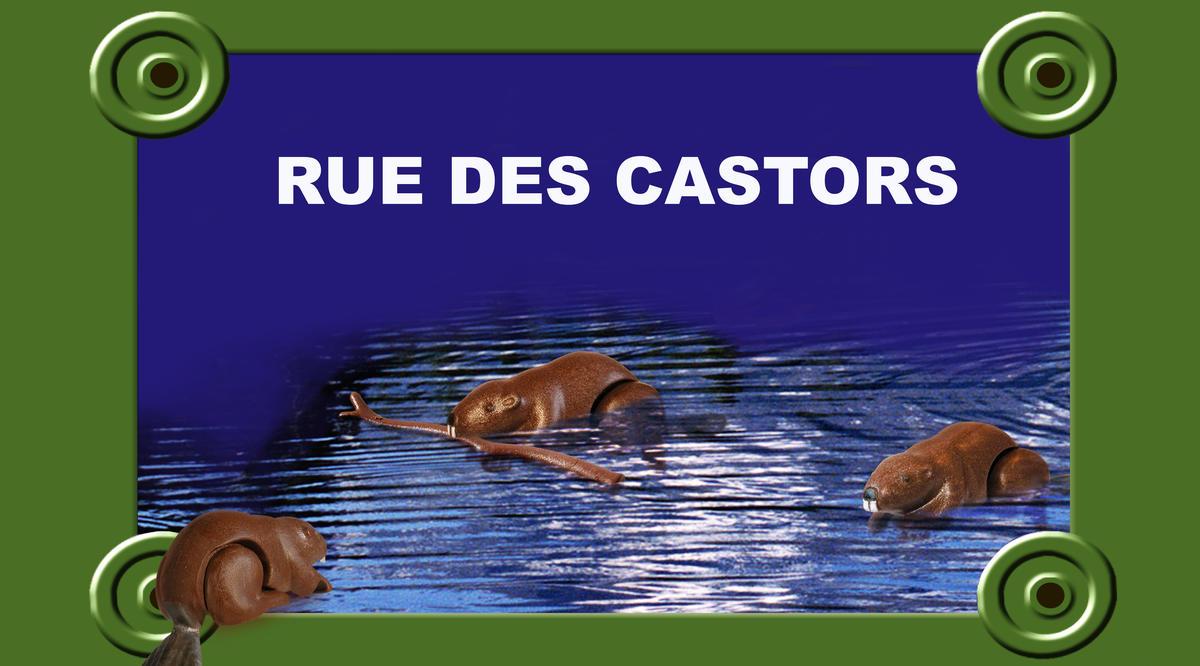 beuvryplaque-de-rue_castors_45x25.jpg