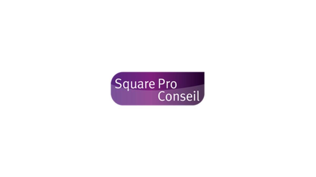 Cyberteam - Square Pro Conseil.jpg