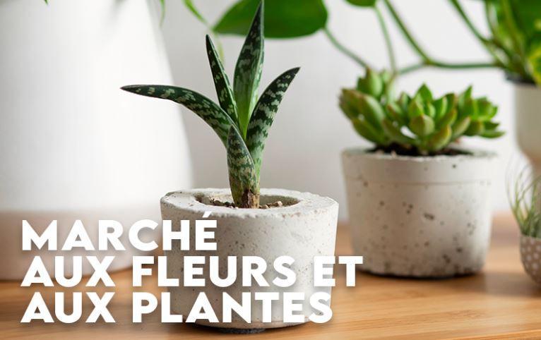 marché aux fleurs et aux plantes.JPG