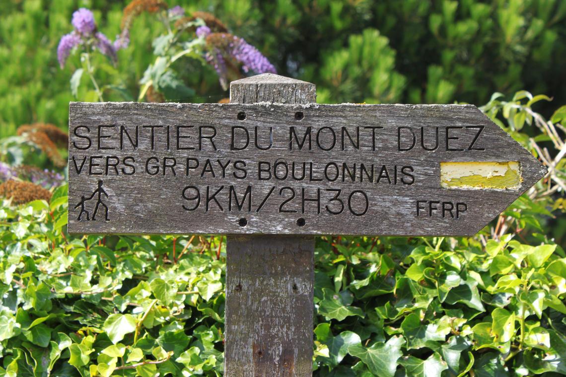 Mont Duez ©L. de Rcoquigny (1).jpg