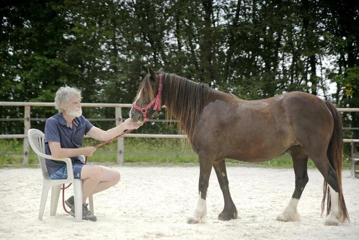 Atelier_relaxation_pleine_nature_Ferme_equestre_naturelle_Les_Grillaults_La_Roche_Posay.jpg