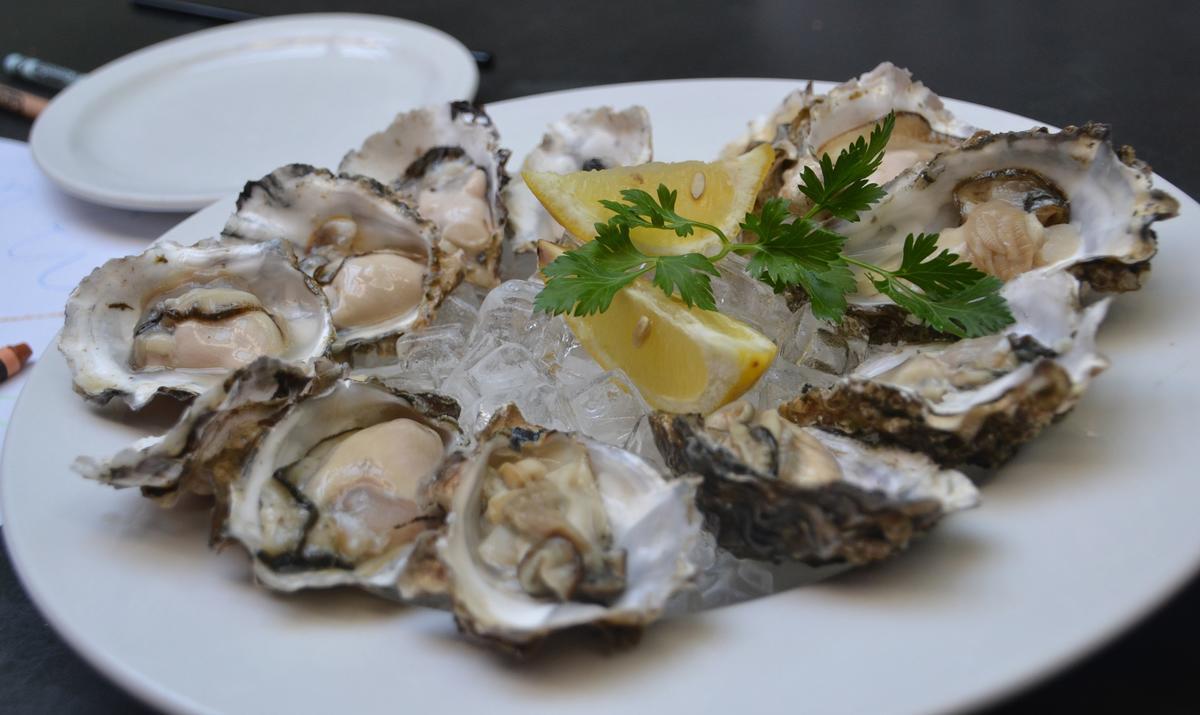 oysters-3625395_1920.jpg