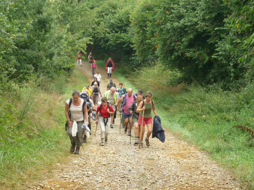 Randonnée accompagnée groupe adour madiran © OTPVA.JPG