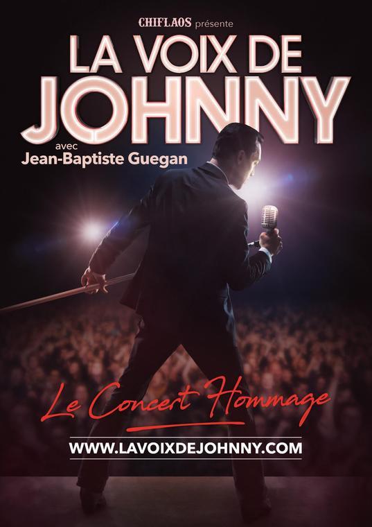 ConcertVoixJohnny 7 juillet.jpg