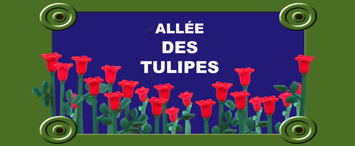 calonneplaque-de-rue_tulipes_51x21.jpg