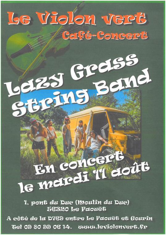 Concert_Violon_Vert_LeFaouet_Aout2020.jpg