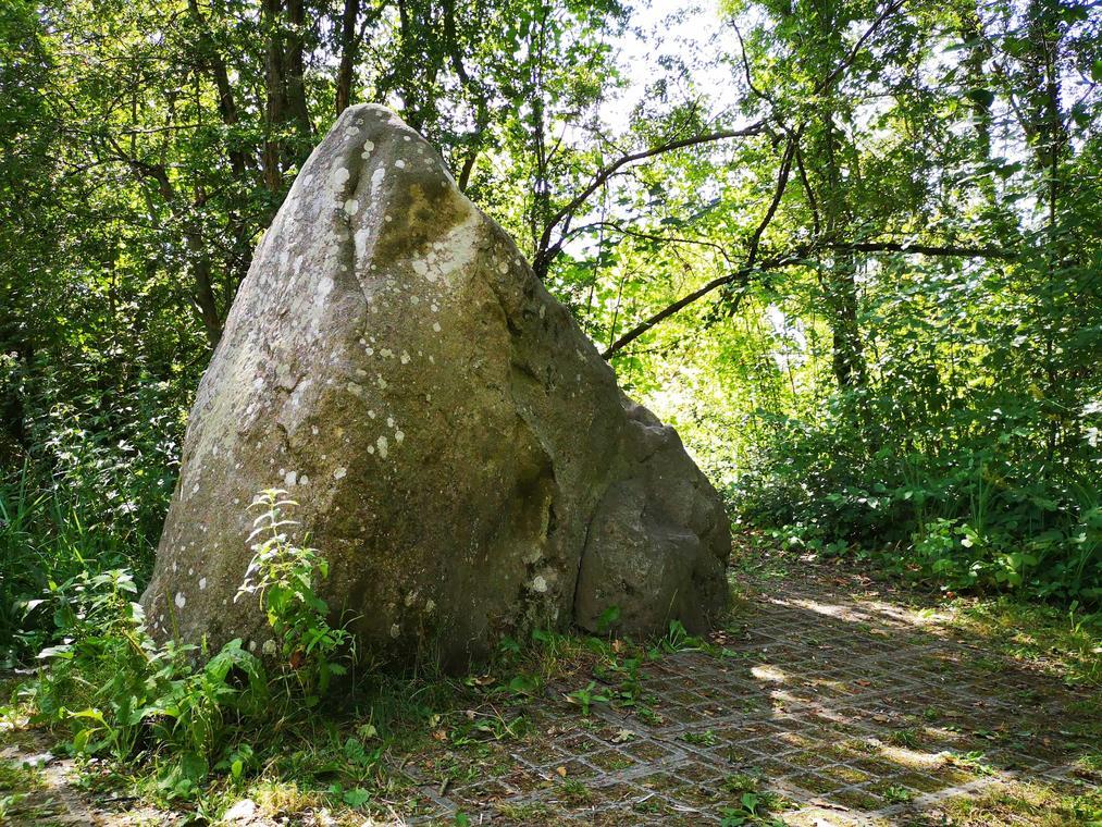 pierre qui pousse  (1).jpg