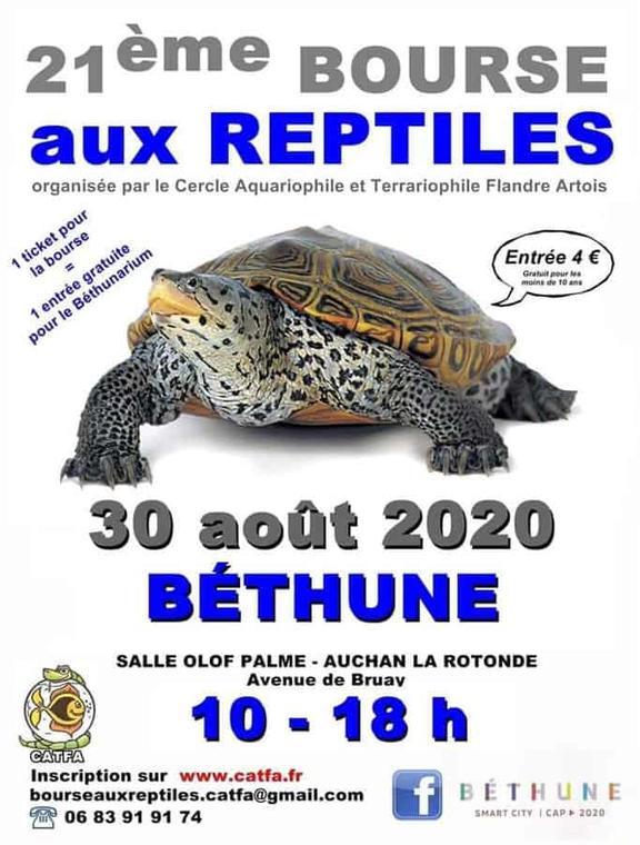 bourse-aux-reptiles-30-aout-2020-bethune.jpg