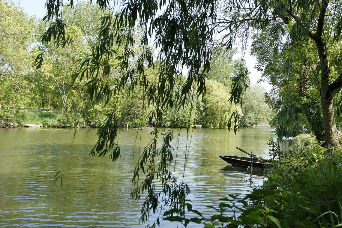 la rivière Vendée- les Velluire-sur-Vendée