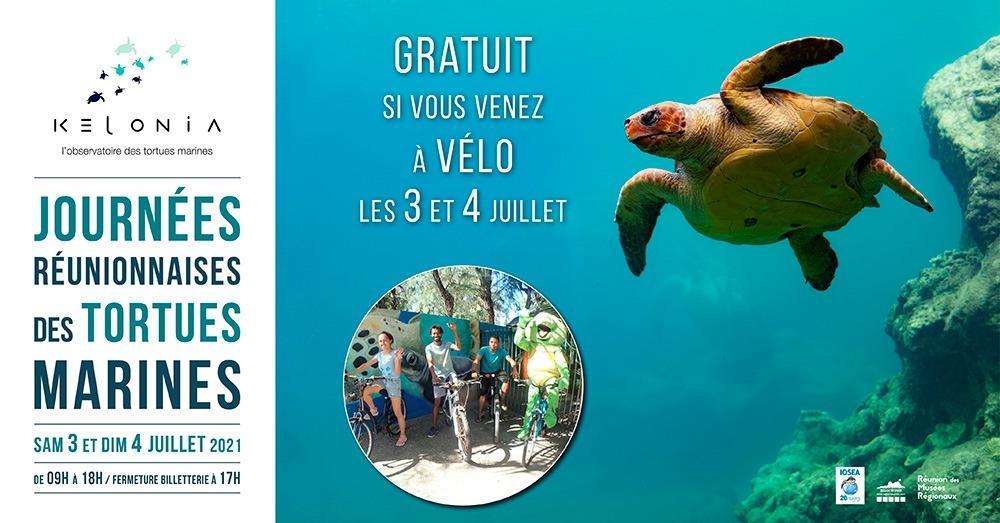journées réunionnaises des tortues marines.jpg