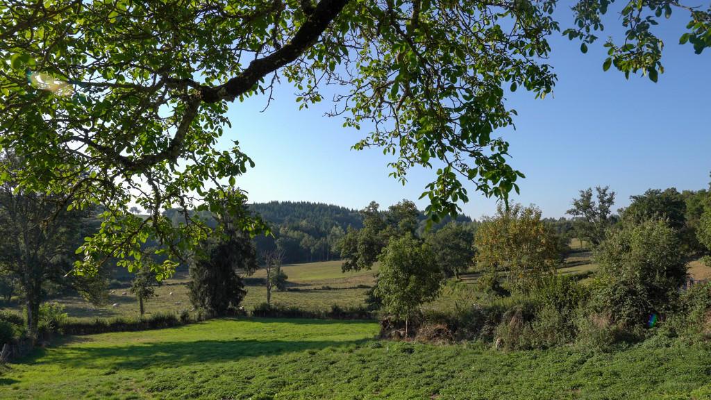 St_Pardoux-D-arnet--paysage-Saison_D_Or.jpg-1024px.JPG