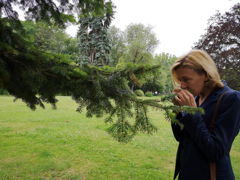 Parc-Bertin-Douai-nature-sophrologie-Douaisis-Nord-France 4 .jpg