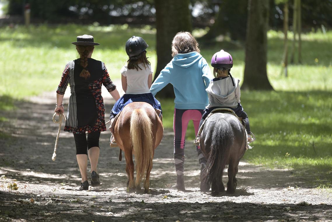 balae poney.jpg