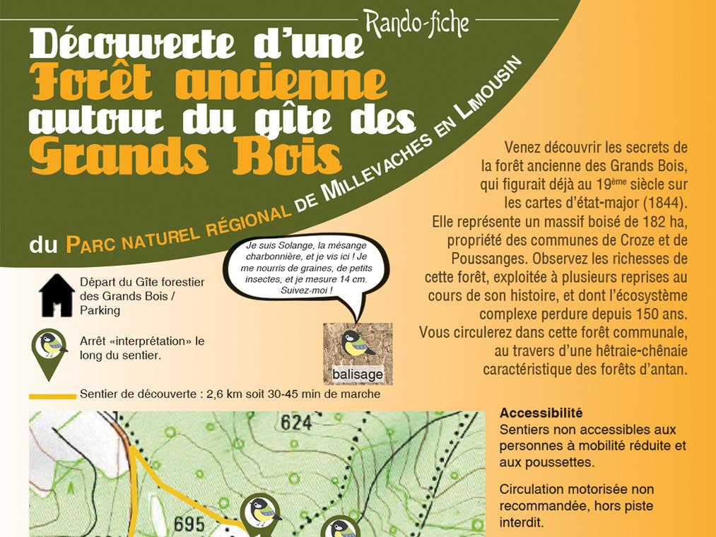 Sentier d'interprétation de la forêt ancienne des Grands Bois.jpg