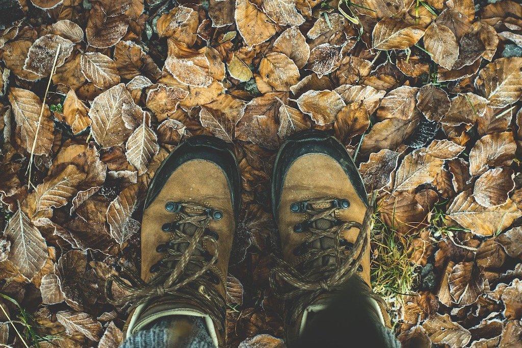 shoes-1940249_1280.jpg
