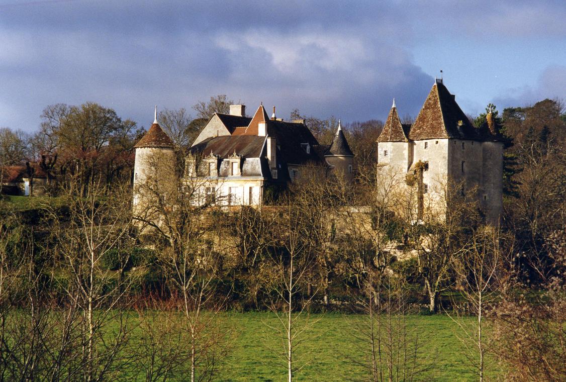 Château de Jutreau - St Pierre de Maillé ©JL Bruère.jpg