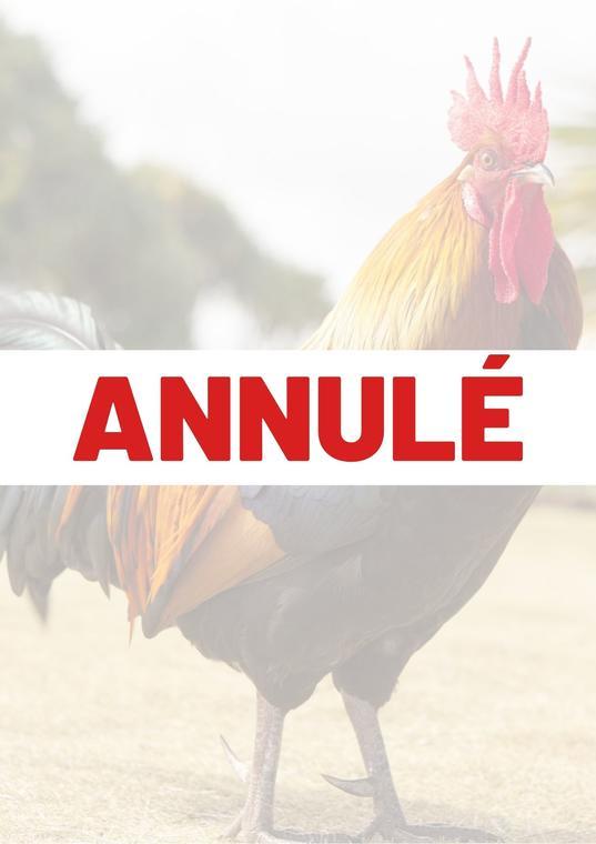 Copie de ANNULÉ (1).jpg