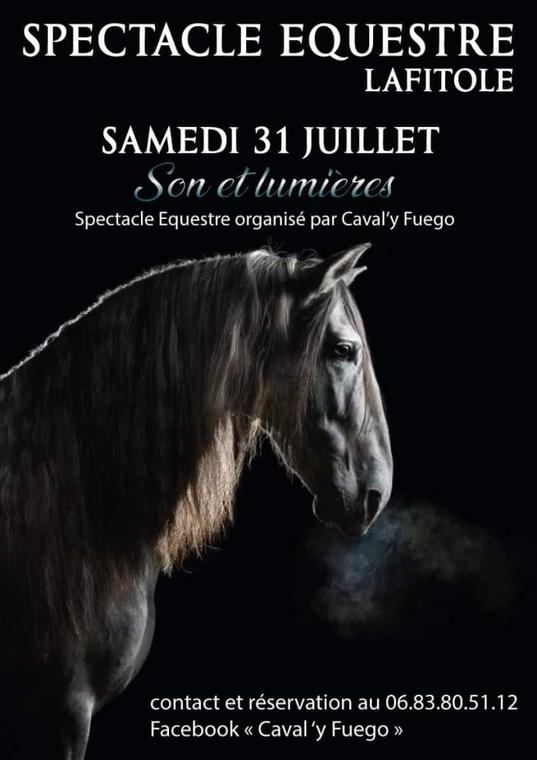 Spectacle-equestre.jpg