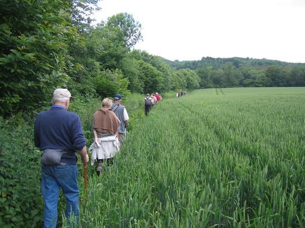 randonnées - PRM - crédit photo Association de Randonnées du Faouët (2).JPG