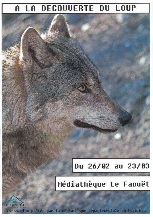 A la découverte du loup - Médiathèque du Morbihan.jpg