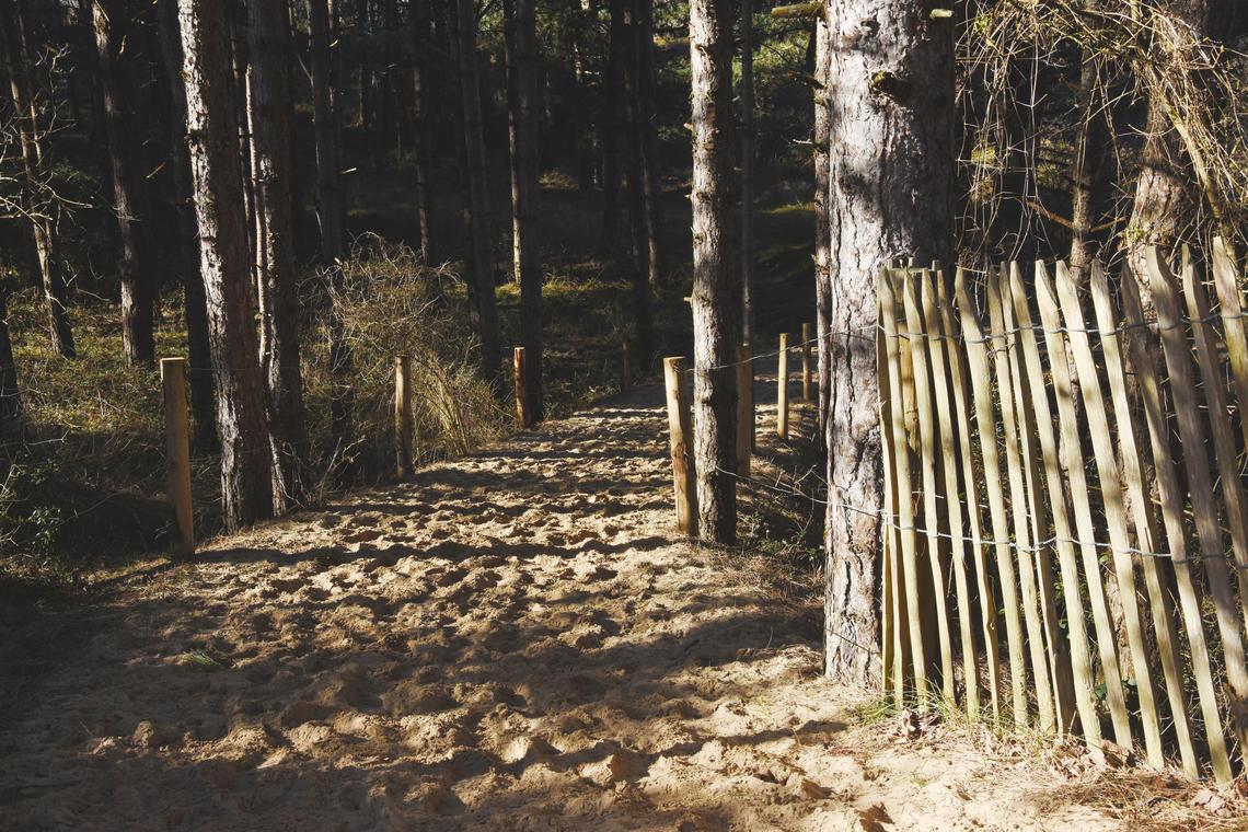 Dunes de la Slack ©L. de Rocquigny_OTBCO.jpg