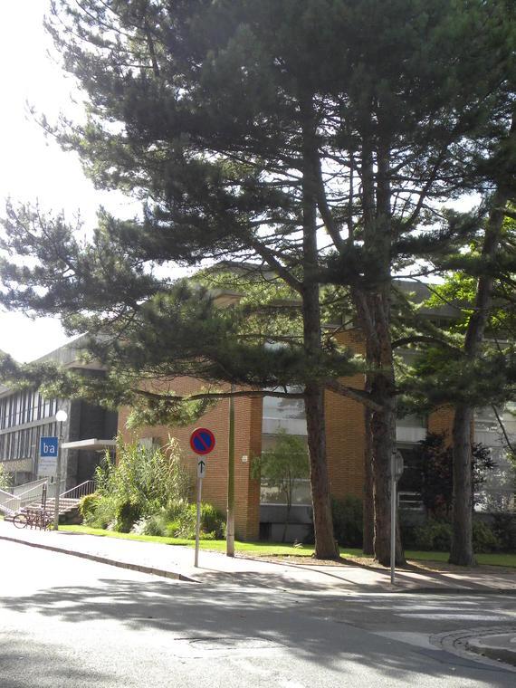 Musée des Beaux Arts Photo Office de Tourisme.JPG