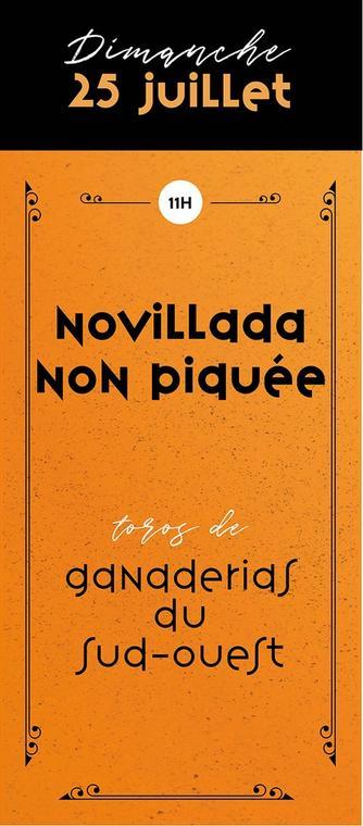 Novillada-Dim25-1000x440.jpg