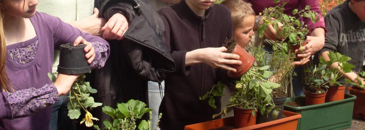 Jean Dubois jardinières2.jpg
