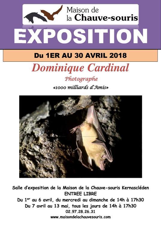 Expo_MaisonChauveSouris_Kernascleden_Avril2018.jpg