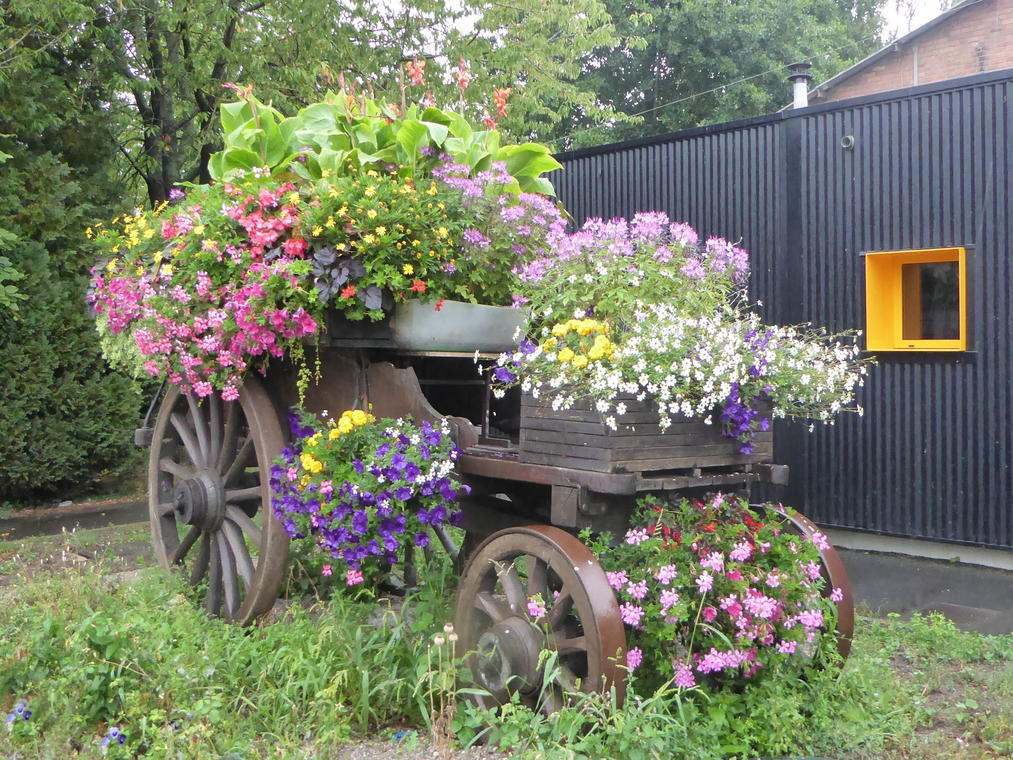 Vieille-Chapelle_la_Charette_à_fleurs.jpg