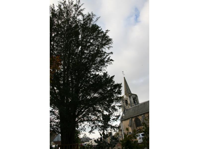église Gonnehem.jpg