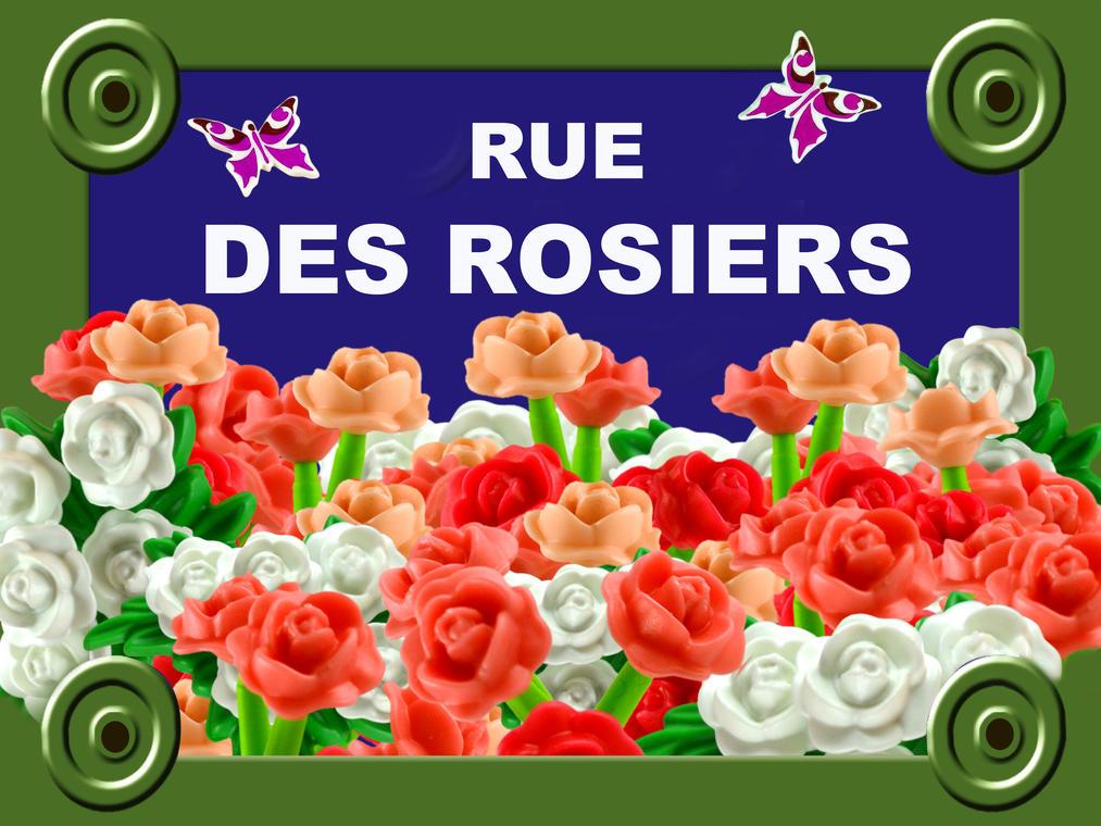 béthuneplaque-de-rue_rosiers_40x30.jpg