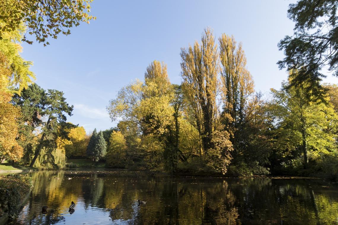 Parc-Bertin-Douai-nature-Douaisis-Nord-France (c) AD Langlet (5).jpg