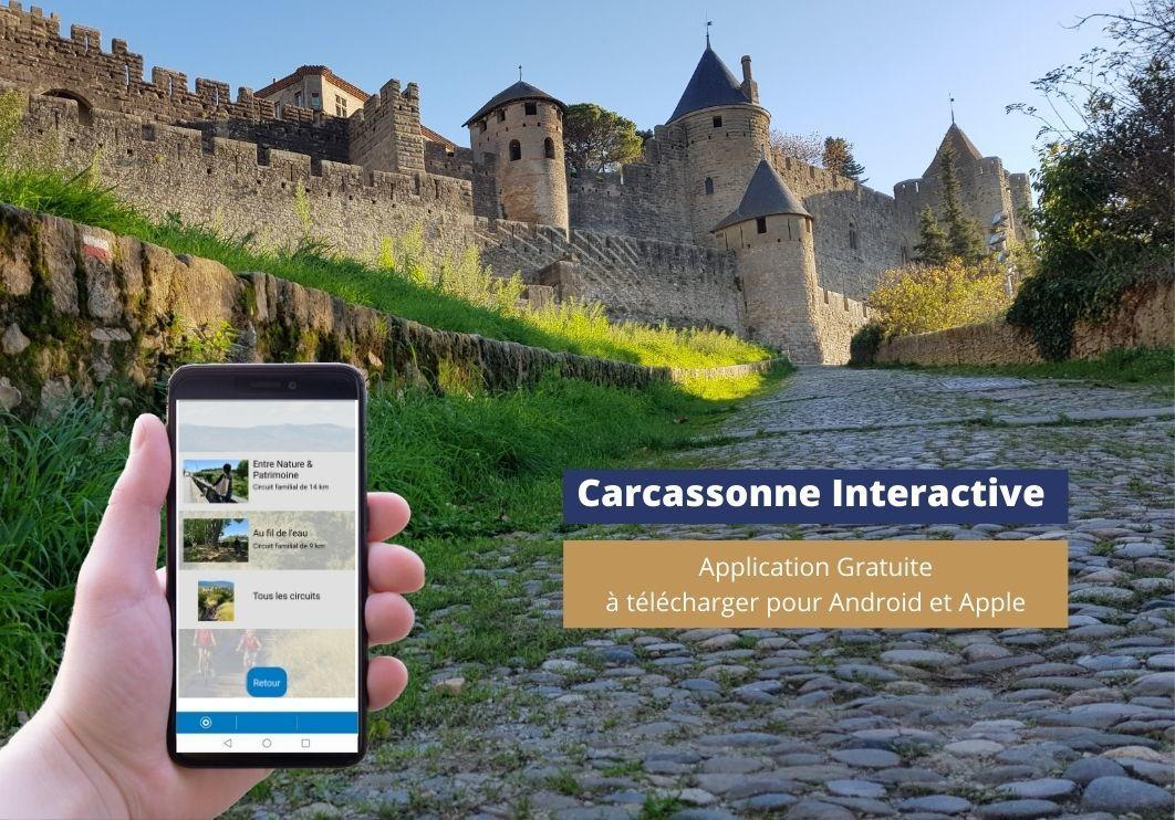carca interactive.jpg