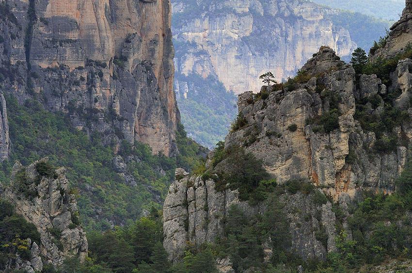 NATURE gorges cTordjman 20.jpg
