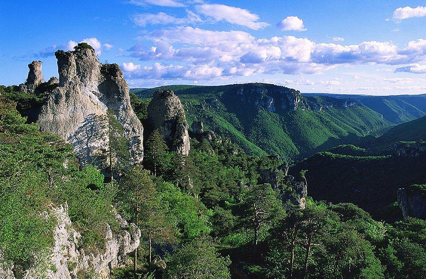 FF gorges cTordjman.jpg