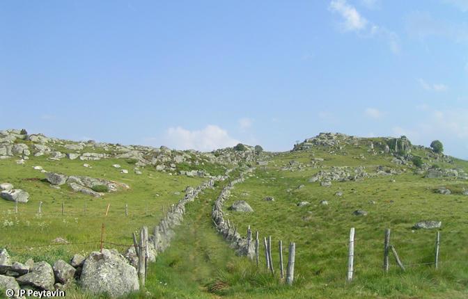Aubrac-chemin-UrbainV-1.jpg