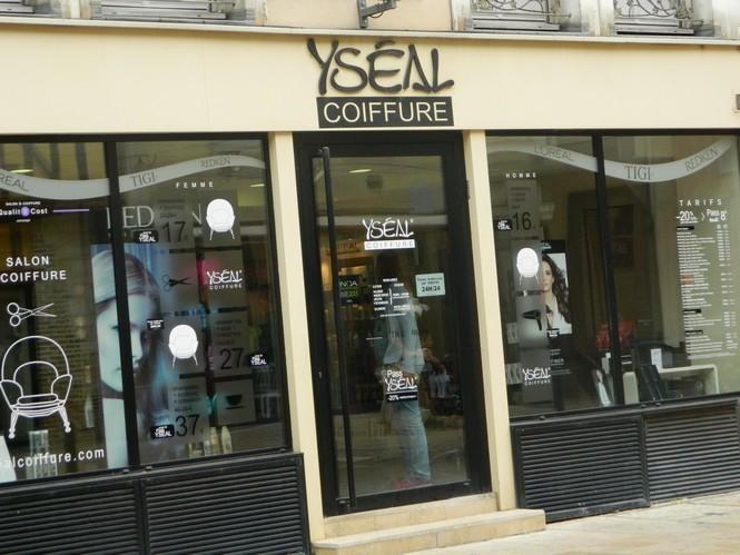 Yseal.jpg