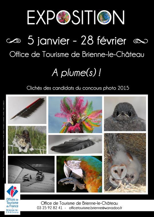 affiche expo 2015 V2 BD.jpg