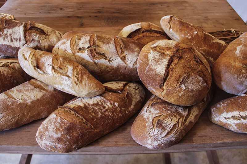 Atelier fabrication du pain