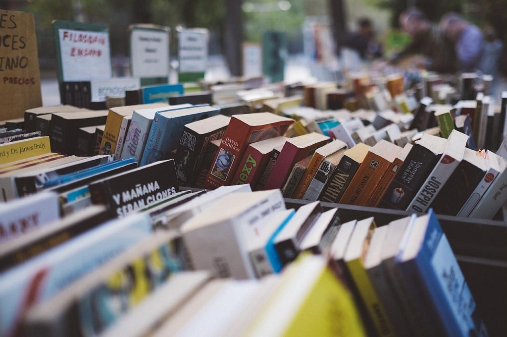 Marché aux livres de Fourcès