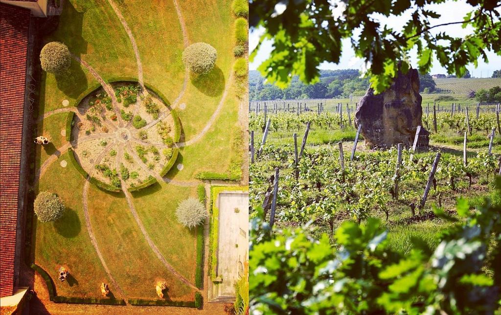 Secrets d'un grand vin